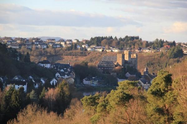 Blick von Süden auf die Burg un den Weinberg (im Hintergrund)